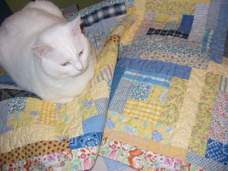 Boo on melanies quilt