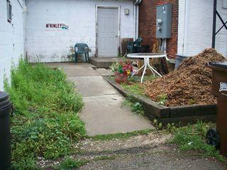 Back door garden pic