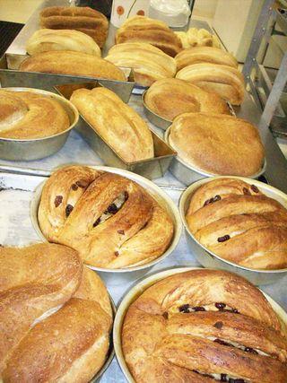 Lotsa breads