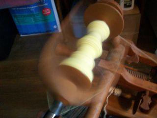 Goldenrod spinning